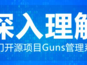 深入理解热门开源项目Guns管理系统
